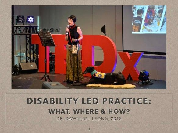 DAWNJOY DisabilityLedPractice 20180811.001
